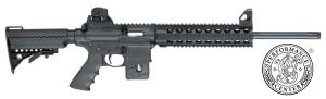 Carabine AR15 S&W MP15-22 PC Performance Center